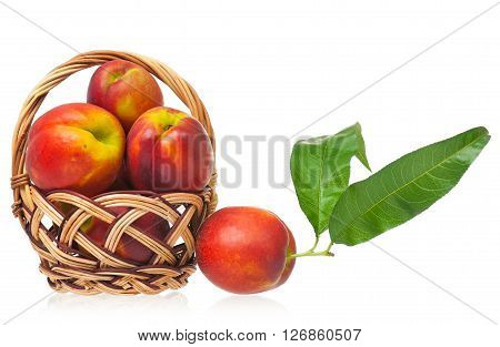 Tasty nectarines in a wicker basket isolated on white background