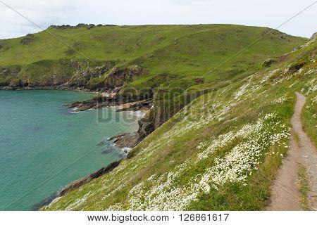 Starehole bay Salcombe Devon UK a short coast walk from this coastal town