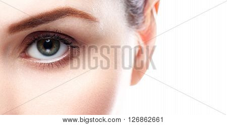 Eye Woman Eyebrow Eyes Lashes
