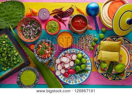 Mexican food mix with sauces nopal and tamale agave guacamole