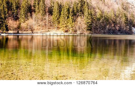 reflection of forest in the lake surface as background