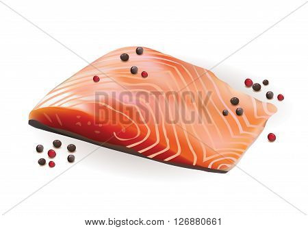 Vector Realistic Fresh Raw Salmon Slice Fillet with Red and Black pepper.Isolated on White Background illustration