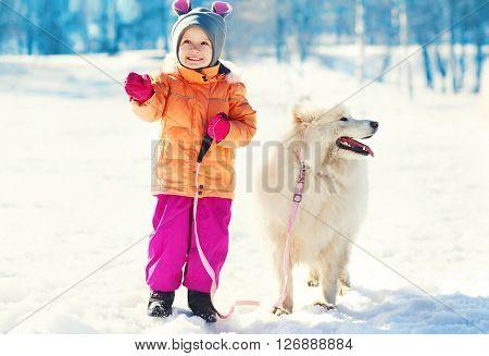 Happy Smiling Child And White Samoyed Dog On Leash Walking Winter