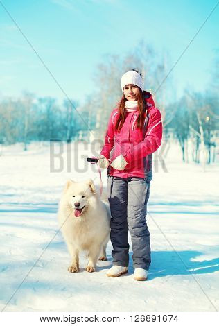 Woman Owner And White Samoyed Dog On Leash Walking In Winter Park