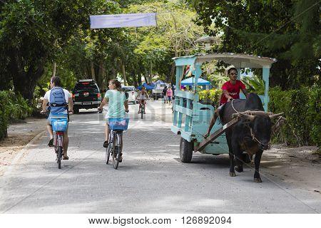 La Digue Street Scene, Seychelles, Editorial