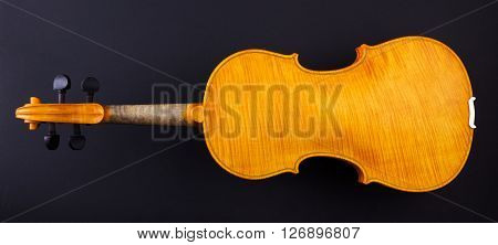 Back View Of A Yellow Violin