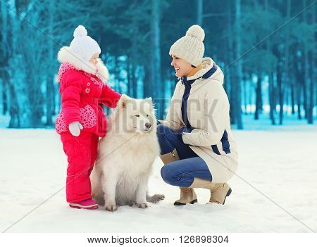 Mother and child with white Samoyed dog together in winter day