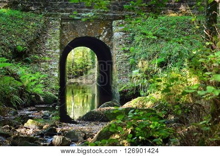 Old stome bridge in a green deciduous forest