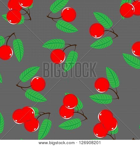 Vector illustration of ripe cherry and cherry slices on a grey background. Cherry berry with stem and green leaves