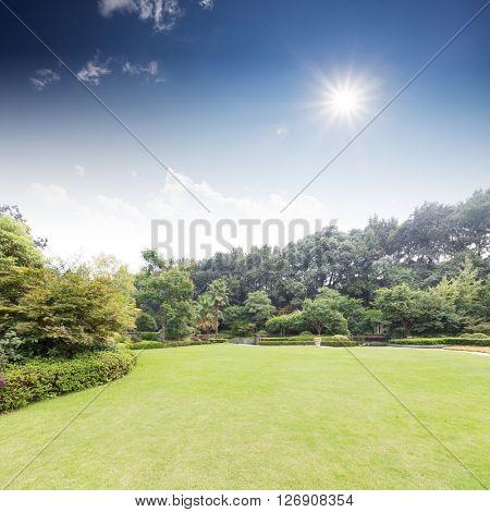 beautiful grassland in back yard of holiday hotel in hangzhou