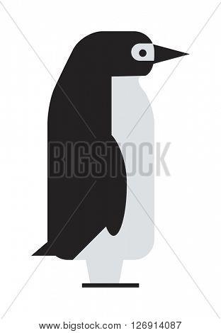 Penguin cute animal bird character vector.