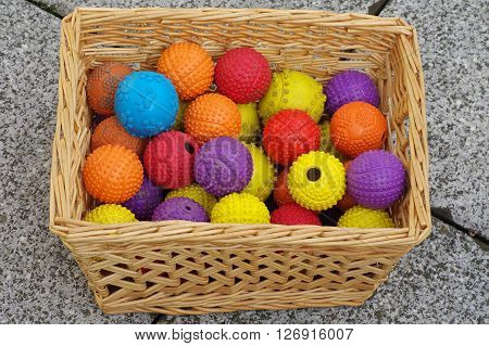 Ball toy for dogs basket wicker still life.