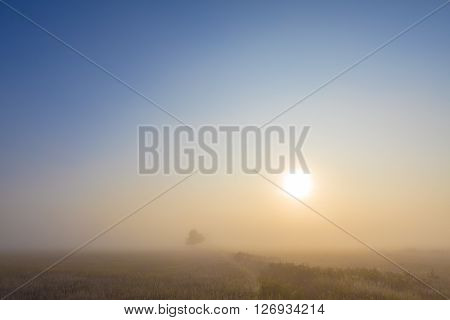 Misty dawn early morning nature grassland landscape view in russian countryside with sun. Mysterious Volga river rural road in fog with vivid colors.