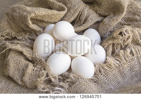 close-up white eggs on a Brown canvas