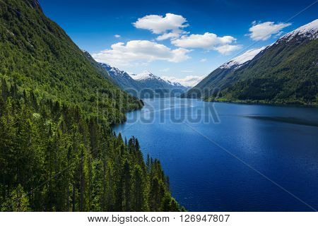 Beautiful Norway landscape - fjord at sunny day with wood in front. Aerial view
