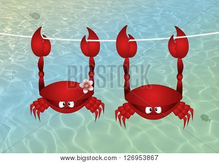 illustration of Couple of crab hanging on the sea