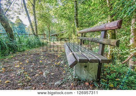 Italy, Udine, San Leonardo del Friuli - Bench along the trail of Rio Patok