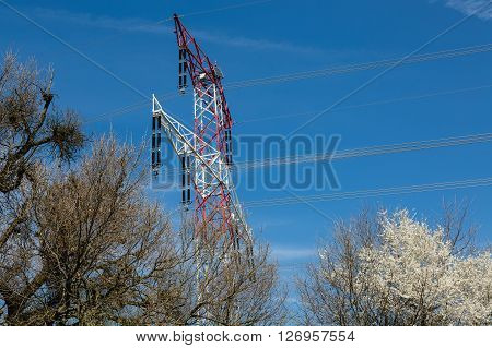 High Voltage Lines And Nature