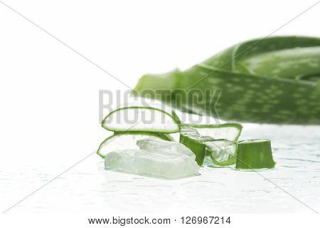 The flesh of aloe vera cut the peel isolated on a white background. Soft focus.
