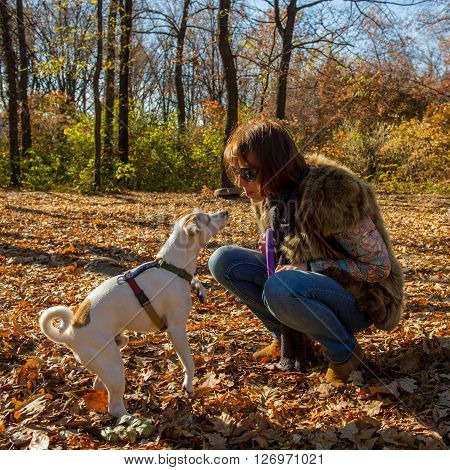 Woman playing with dog in autumn park the age of 40 years