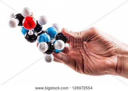 Holding A Caffeine Molecular Structure