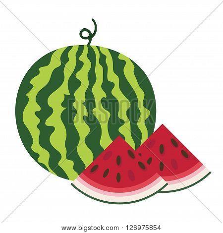 Vector illustration of fresh ripe watermelon. Watermelon vector illustration. Summer concept. Watermelon Isolated. Composition of Watermelon and Watermelon Slice on white background.