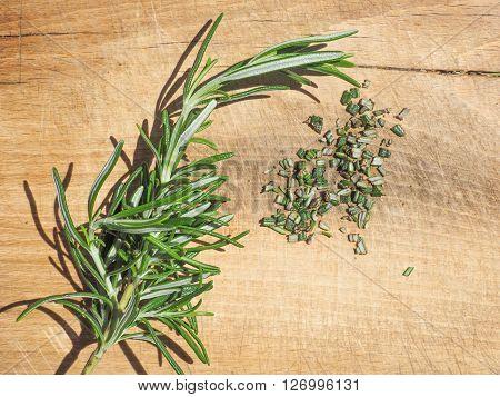 Rosemary Plant On Cutting Board