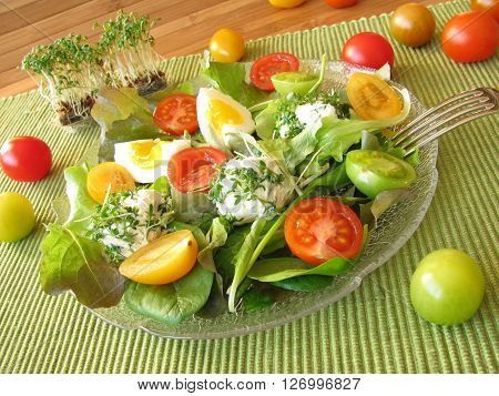 Salad with tomatoes, eggs and cream cheese balls with cress