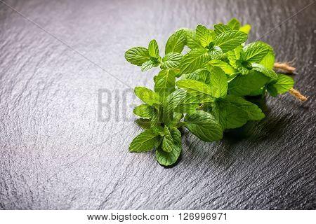 Beautiful Bunch Fresh Green Lemon Melissa Officinalis Tied Twine On Slate Background, Close Up
