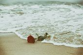 Waves washing away a red rose from the beach. Concept of romantic love, romance, but may also symbol poster