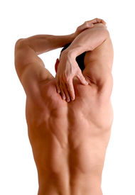 picture of fitness man body  - back of a man who is fit and is stretching - JPG
