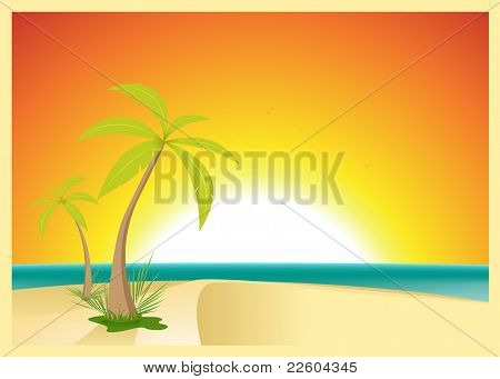 Exotic Beach Postcard