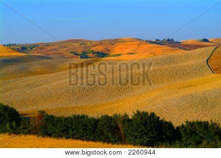 Farmland Toskana