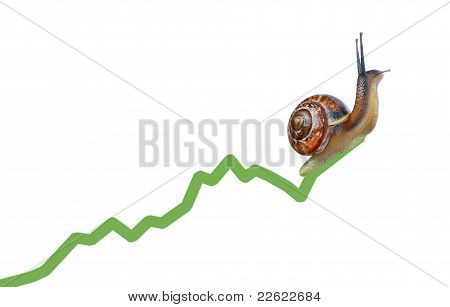 Snail On Chart Currency
