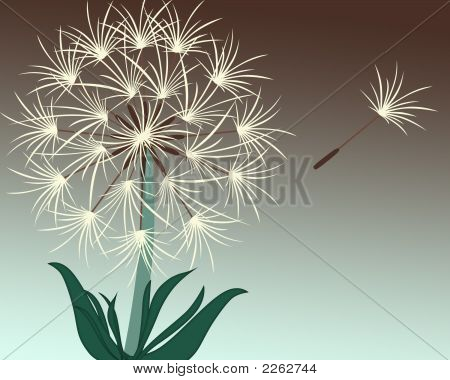 Make A Wish - Dandelion Illustration