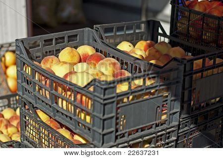 Peaches In The Crates