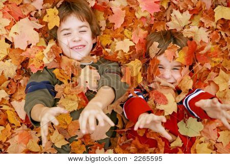 Boys Playing In The Leaves