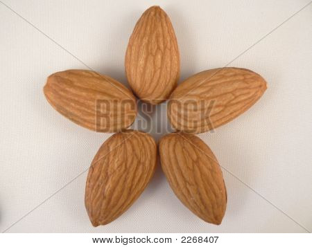 Almonds In Shape Of Flower