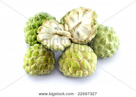 Custard apples group