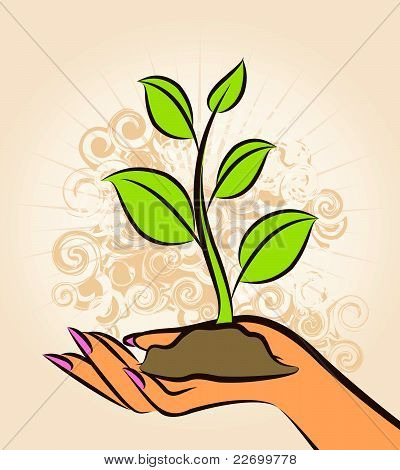Human hand with a green plant