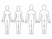 Male And Female Body Front And Back View. Blank Human Body Template For Medical Infographic. Isolate poster