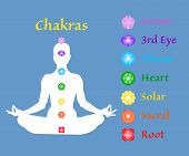 Famale Body In Lotus Yoga Asana With Seven Chakras On Blue Background. Root, Sacral, Solar, Heart, T poster