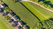 Drop Down View Of Rural Houses Next To Corn Field. Agricultural Area From Above. poster