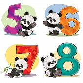 Set Of Cute Baby Panda Bears With Numbers Vector Cartoon Illustration. Clipart For Greeting Card For poster