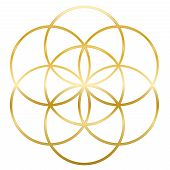 Golden Seed Of Life. Precursor Of Flower Of Life Symbol. Unique Geometrical Figure, Composed Of Seve poster