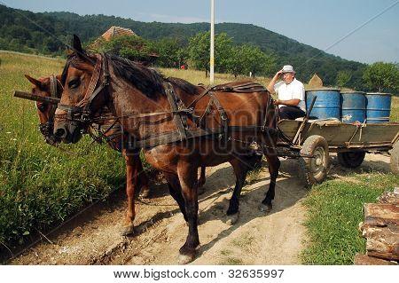 Peasant carrying barrels on a horse driven cart