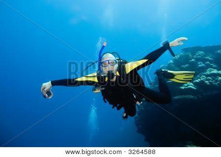 Flying Diver