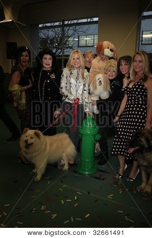 LOS ANGELES, CA - MAY 3: Joan Van Ark, Maria Conchita Alonso, Rip Taylor, Erin Murphy, Kate Linder, Barbara Van Orden at the opening of the Pooch Hotel on May 3, 2012 in Hollywood, Los Angeles, CA.