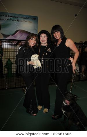 LOS ANGELES, CA - MAY 3: Kate Linder, Barbara Van Orden, Kim Rhodes at the grand opening of the Pooch Hotel on May 3, 2012 in Hollywood, Los Angeles, California.