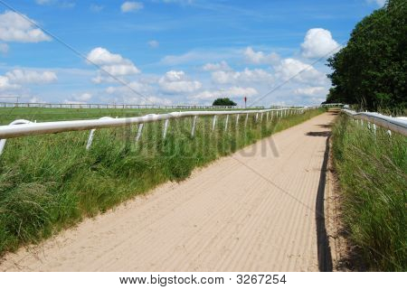 Racehorse Training Track On Epsom Downs